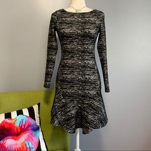 Banana Republic Long Sleeve Drop Waist Dress